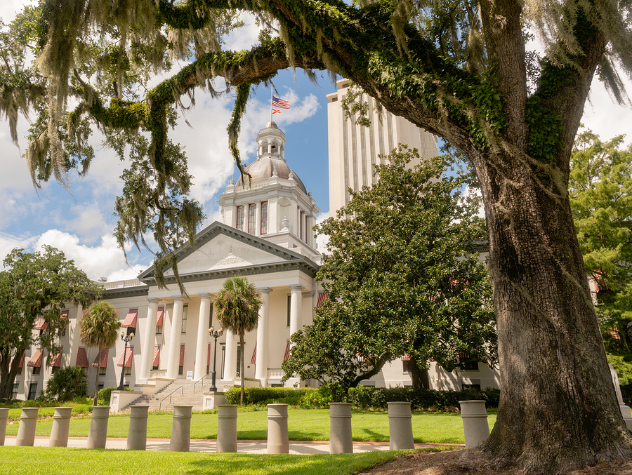 Florida State Capitol Building_ Florida law
